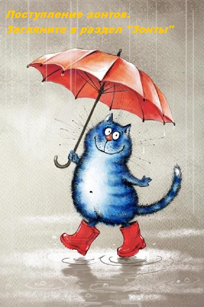 Поступление зонтов